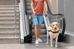 Rehabilitationslehrer für blinde und sehbehinderte Menschen